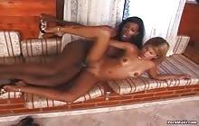 Sexy black shemale fucks brunette babe