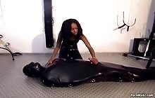 Schwarze Witwe S04