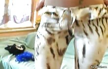 Blonde bitch masturbates on cam